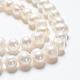 Hebras de perlas de agua dulce cultivadas naturalesA23TC011-5
