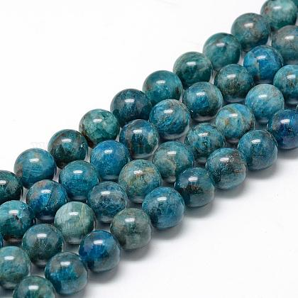 Natural Apatite Beads Strands G-R446-12mm-11-1