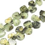 Natural Prehnite Beads Strands, Fan, 16~24x12~22x5~8mm, Hole: 1mm