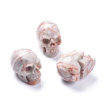 Хэллоуин натуральный чистый камень украшения для дома, череп, 38~38.5x32~32.5x49~50 мм
