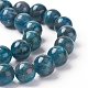 Natural Apatite Beads StrandsG-L554-01-10mm-2