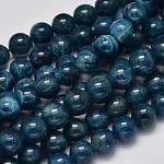 Round Natural Apatite Beads Strands, Grade A, 8mm, Hole: 1mm; about 51pcs/strand, 15.7