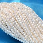 Round Shell Pearl Bead Strands, White, 3mm, Hole: 0.5mm; about 122pcs/strand, 15.74inches