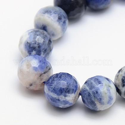 Natural Sodalite Beads StrandsX-G-L149-8mm-01-1