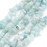 Natural Amazonite Beads Strands, Chips, SkyBlue, 4~11x3~8x2~10mm, Hole: 1mm