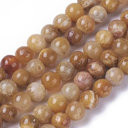 Natural Chrysanthemum Stone Beads StrandsG-F648-01-A-1