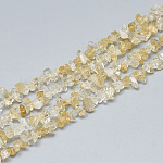 Natural Citrine Beads Strands, Chip, 3~11x3~5x1~4mm, Hole: 1mm; about 380~400pcs/strand, 33''