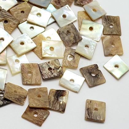 Square Natural Akoya Shell BeadsSHEL-N034-02-1
