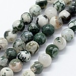 Natural Tree Agate Beads Strands, Round, 10mm, Hole: 1.2mm; about 37pcs/strand, 14.76inches(37.5cm)