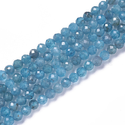 Natural Apatite Beads Strands G-F596-29-3mm-1