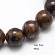 Natural Bronzite Beads StrandsG-G212-10mm-42-1