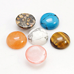 Gemstone Cabochons, Half Round/Dome, Mixed Stone, 12x5mm