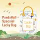 2021 borsa fortunata! sacchetto fortunato casuale dell'acetato di cellulosa di 5 stili (resina)!DIY-LUCKYBAY-67-1
