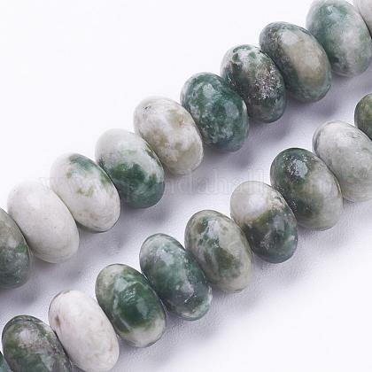 Chapelets de perles en jaspe à pois verts naturelsG-F520-09-1