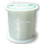 Nylon Wire, Fishing Line, Beading Thread, White, about 0.3mm in diameter, 80m/roll