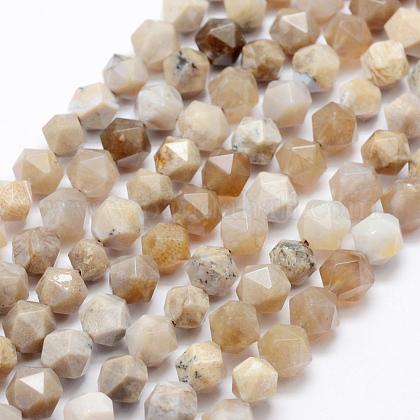 Natural Chrysanthemum Stone Beads StrandsG-K209-02H-8mm-1