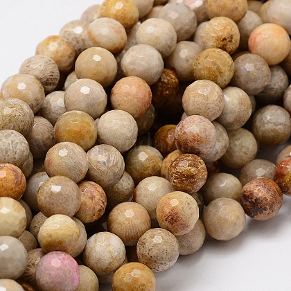 Faceted Round Natural Chrysanthemum Stone/Fossil Coral Bead Strands G-L437-03-10mm-1