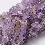 Natural Ametrine Chip Bead Strands, 5~8x5~8mm, Hole: 1mm; about 36