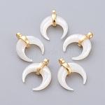 Colgantes de concha de nácar blanco natural, con oro chapado fornituras de latón, doble cuerno / luna creciente, 15.5x13x5.3mm, agujero: 1.5 mm