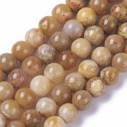 Natural Chrysanthemum Stone Beads StrandsG-F648-01-B-1