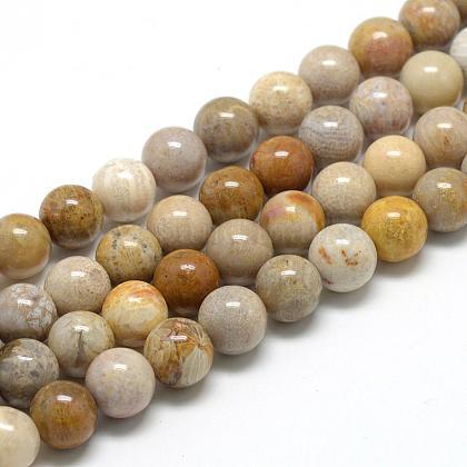 Natural Chrysanthemum Stone Beads StrandsG-R446-8mm-28-1