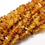Natural Amber Chip Beads Strands, 5~14x4~10mm, Hole: 1mm; about 15.5