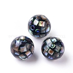 Natural Abalone Shell Mop Ball Beads, Abalone Shell/Paua ShellRound Beads, Colorful, about 10mm in diameter