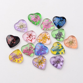Heart Handmade Glass Flat Back Cabochons, with Dried Flower, Mixed Color, 20x20x6mm