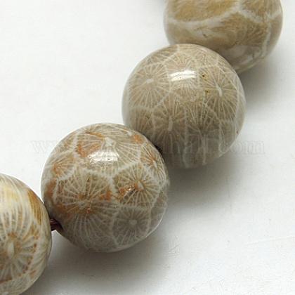 Cuentas de piedra de crisantemo natural hebrasG-G212-6mm-31-1