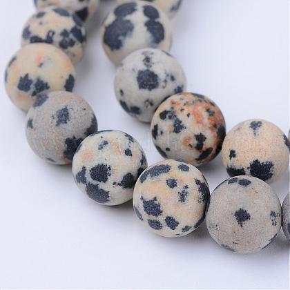 Chapelets de perles en jaspe dalmatien naturelleG-Q462-6mm-05-1