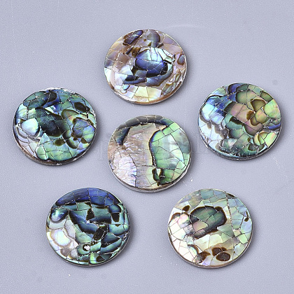 Natural Abalone Shell/Paua Shell CabochonsSSHEL-N034-45-1