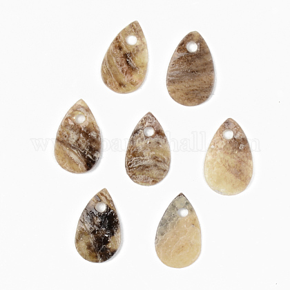 Natural Akoya Shell CharmsSHEL-R048-025-1