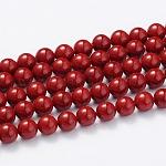 Abalorios de concha abalorios hebras, Grado A, pulido, redondo, camesí, 6mm, agujero: 0.5 mm; aproximamente 61 unidades / cadena