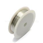 Copper Jewelry Wire, Silver, 24 Gauge, 0.5mm; 7m/roll, 10rolls/set