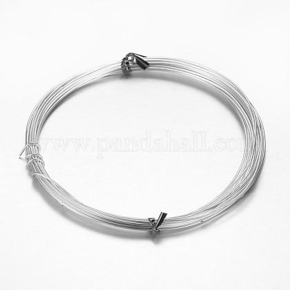 Aluminum Craft WireAW-D009-1mm-10m-01-1