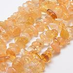 Natural Citrine Beads Strands, Nuggets, 12~20x6~8mm, Hole: 1mm; 15.3