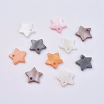 Shell Pendants, Dyed, Star Charms, Mixed Color, 12x2mm, Hole: 1.2mm