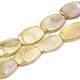 Brins de perles de coquille d'eau douce de couleur abSHEL-T009-04D-1