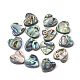 Perles coquille d'ormeau / coquille de paua, cœur, colorées, 14x14x4mm, Trou: 1.2mm