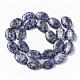 Natural Blue Spot Jasper Beads StrandsX-G-S359-002-2