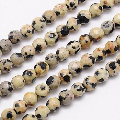 Chapelets de perles en jaspe de dalmation naturelleG-G545-11-1